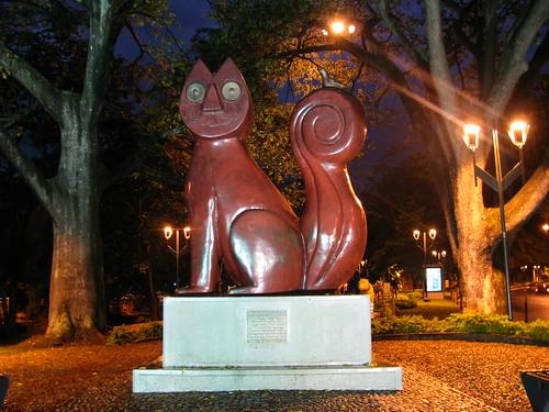 gato del Río, Cali