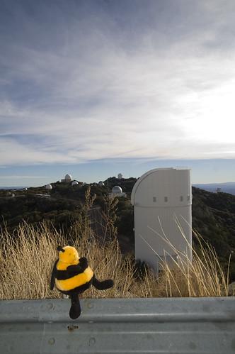travel mascot observing kpno 4meter dec2010 buzznaut