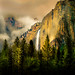 I always wanted to go to Yosemite by Zimmergimmer