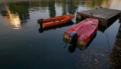 Amarrage de bateaux et de canards