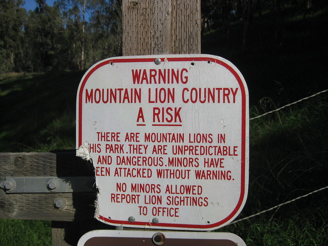 Warning! Mountain Lion (chomp)