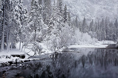 Winter Quiet on the Merced River, Yosemite National Park