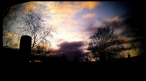 trees sun silhouette clouds sunrise ottawa chilly westboro android htc sunporch earlswood sooc kitchissippi vignetteapp htcdesire