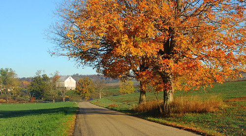 autumn color fall landscape pennsylvania southwesternpennsylvania