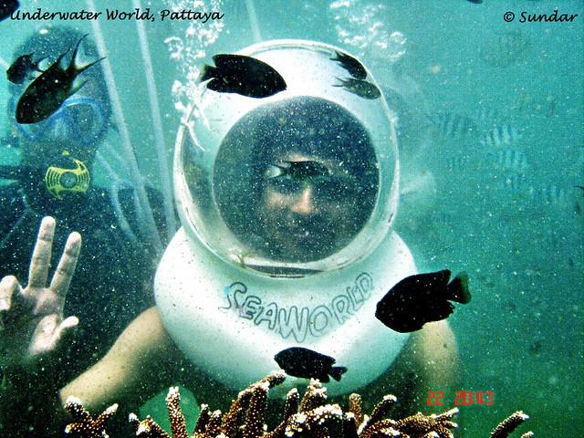 Underwater World - Pattaya Flickr - Photo Sharing!