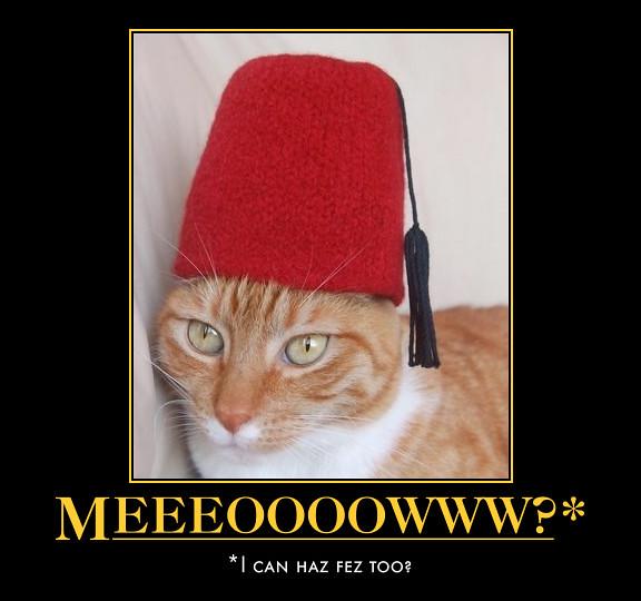 Cat Fez Fezzes Are Cool Cat