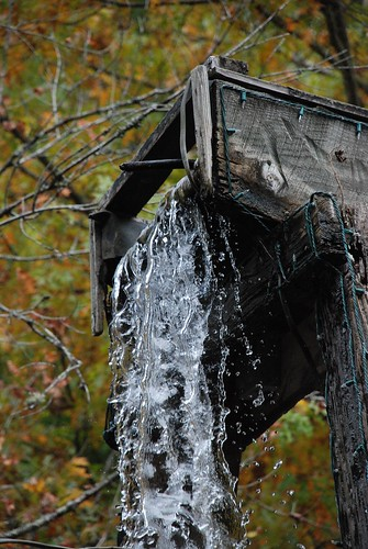 water dollywood myfave 2010 faved october2010 heylookatthis