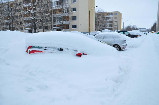 Cars under snow in Tallinn