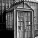 Broughton Hospital Greenhouse 9/365