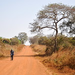 Southern Sudan: a long walk to vote