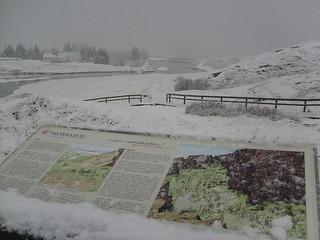 Någonstans på Island. Kallt.