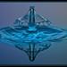 Bluehut by Cymaii