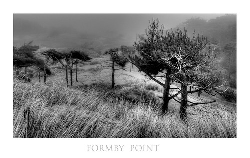 Formby point landscape in the fog