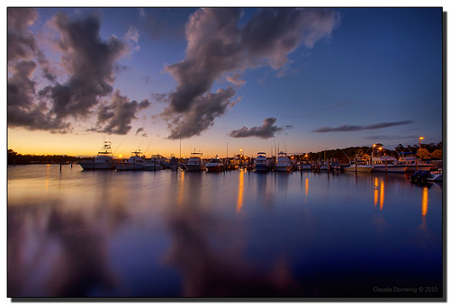 Night Falls Over the Marina