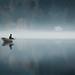 Quiet Moment by Mikko Lagerstedt