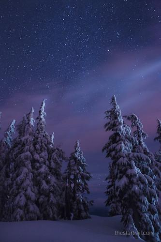Brisk Starry Night