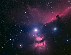 IC434 area 18Jan09 Ha OIII Blu 60 60 45min 8bit high pass