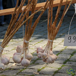 Fresh Garlic for Sale - Prague, Czech Republic