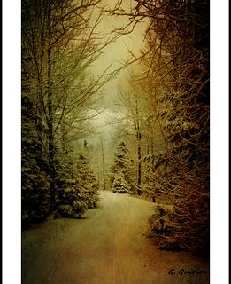 Vision poétique de l'hiver.