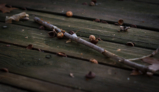 Winter stick II