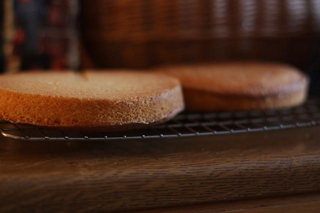 Sponge Cake Recipe Using Splenda