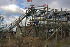 On the high ropes Image