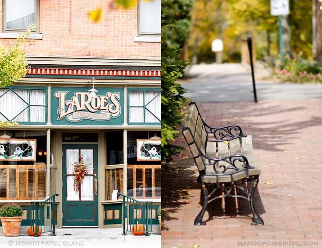 laroe's & a bench