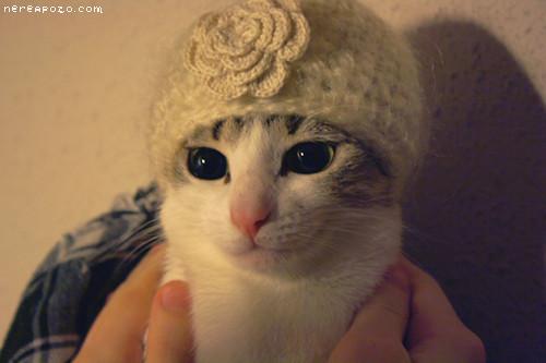 Winter Gabi! LOL