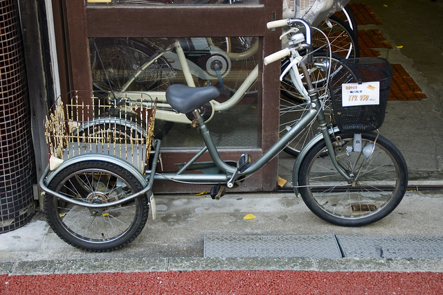 Adult Tricycle For Sale 112