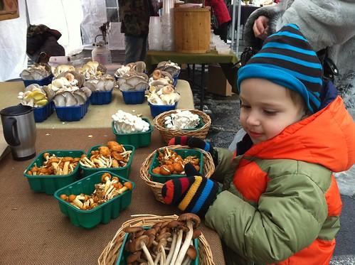 the mushroom stand freshfarm markets