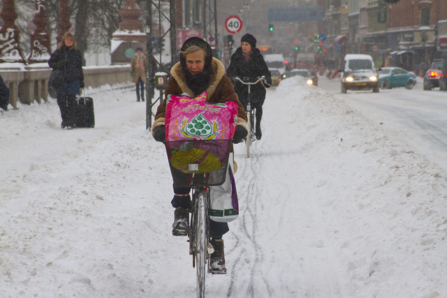 Snowstorm Headwind 03 - Winter Cycling in Copenhagen