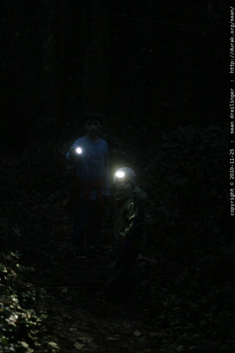 brothers using headlamps on the trail