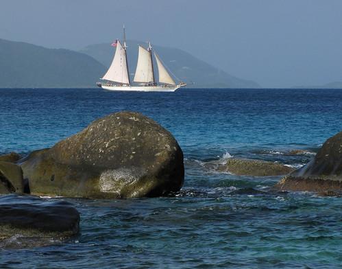 Under Full Sail by Sandra Leidholdt
