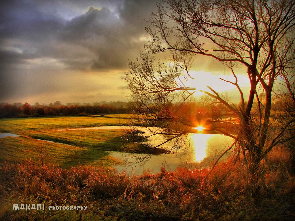 Sunset scenery : pool reflection