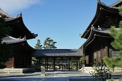 myoshinji-two