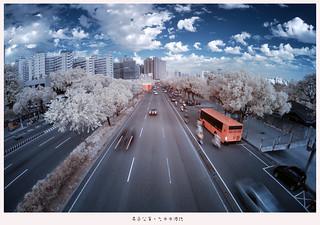 異色公車。台中中港路