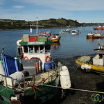 Colorful Bosts at the Port in Delcahue - Chiloe, Chile