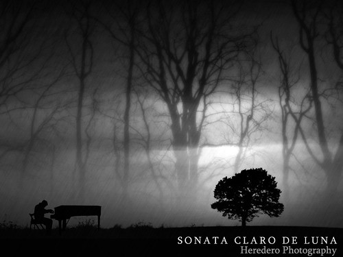 Sonata Claro De Luna (Moonlight Sonata) (#123 Project Music Vs. Photo)