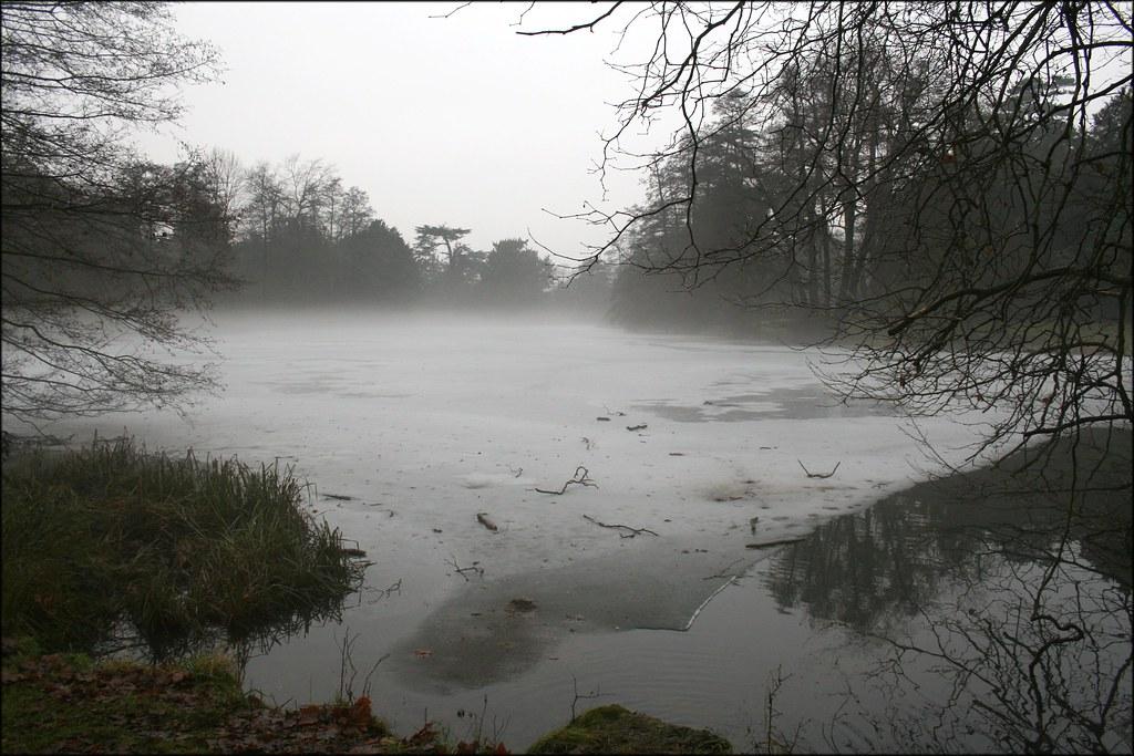 Wooburn Park Mist above the frozen pond in Wooburn Park.