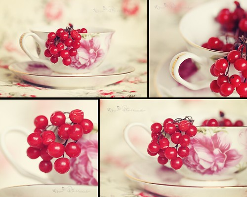 A Cup of Berries