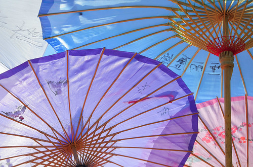 Chinese Parasol Details