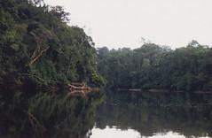 Řekou, pralesem a vězením Francouzské Guyany