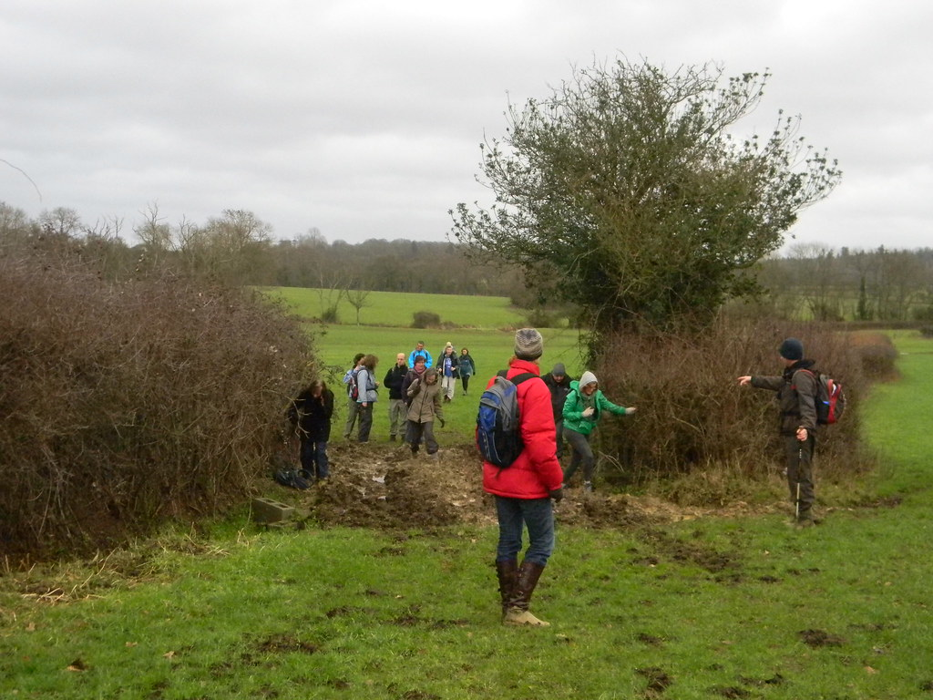 Theres some more over here! The Campaign for Real Mud enjoy a new find on the Penshurst Circular