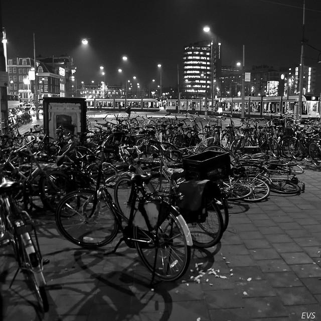 .Riders.