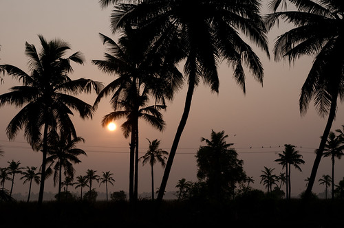 india sunrise kerala southindia 2011