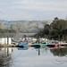 Lake-Chabot-2011-02-20