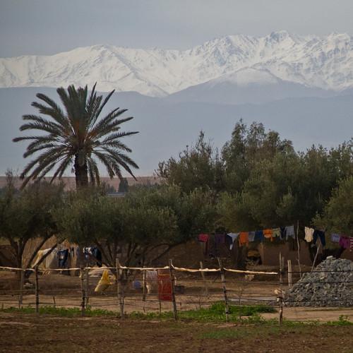 marakesh morocco essaouira morrocco travelphotography