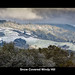 Snow Covered Windy Hill by Frank Austin Nothaft