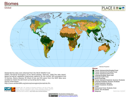 Environmental Science Chapter 4 Biomes Holt Flashcards