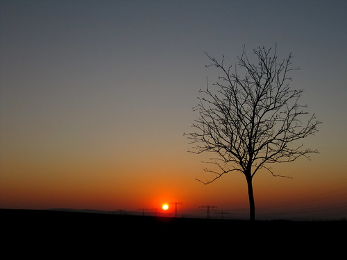 Ich wünsche euch einen schönen Abend und eine gute Nacht!